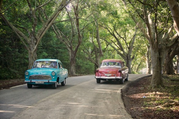 Classic cars on the road to Havana